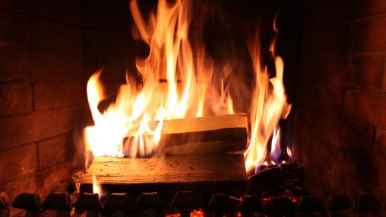 chimney home service